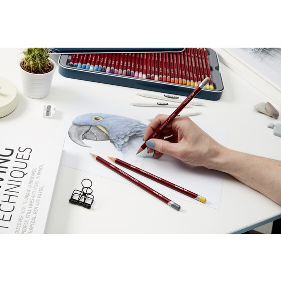 derwent pastel pencials drawing