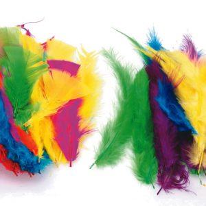 feathers_p51.jpg
