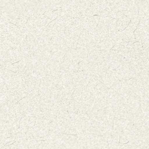 ricepaper.jpg