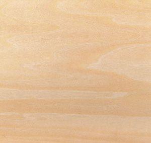 canvas_Plywood-plate.jpg