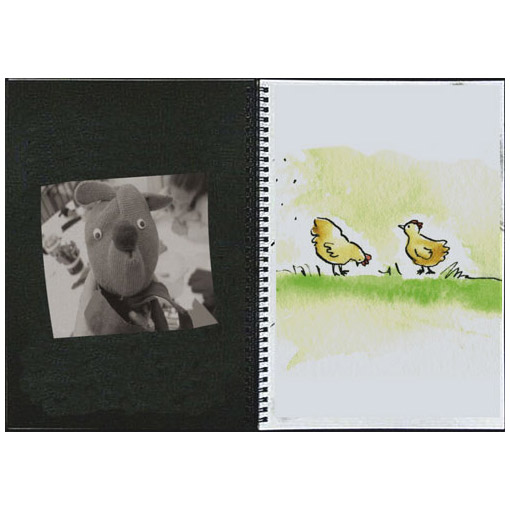 blackwhite-vis-diary
